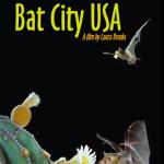BatCity-web