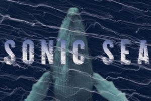 Wellfleet OysterFest: Sonic Sea (film)