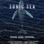 sonic_sea_web