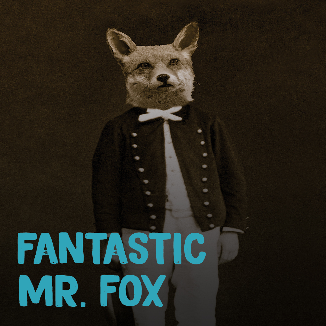 mr fox block